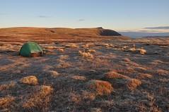 First light, Sgor Gaoith (Paul Sammonds) Tags: camp mhor moine
