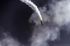 Extra (1) (Indavar) Tags: plane airplane airshow chipmunk mustang albatros rand beech at6 radial an2 p51 l39 antonov dc4 dhc1 beech18 t28trojan b378