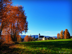 bright autumn (skistar64) Tags: november autumn outside colours outdoor herbst krnten carinthia athome pisweg daham farbenpracht drausen