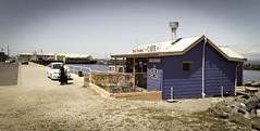 Stanley Seal Cruises, Tasmania (paulledger81) Tags: port town seaside cafe fishing tasmania seals tours dockside