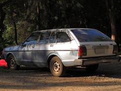Datsun 150Y Wagon 1981 (RL GNZLZ) Tags: wagon sunny 1981 datsun 150y