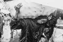 Sack of Potatoes - 21st June 2016 (princetontiger) Tags: kenya monochrome blackandwhite grayscale street streetphotography streetphotograpghy load burden potatoes sack