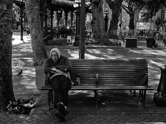 Pioneer Square, Seattle, 2016 (minus6 (tuan)) Tags: minus6