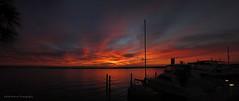 Sunrise, Demon's Landing (Rocks In Her Head) Tags: demonslanding stpetersburgfl stpetersburg sunrise orangesky sky sailboats silhouette