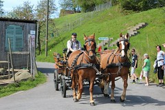 "12. Swiss Travel Festival 2012 • <a style=""font-size:0.8em;"" href=""http://www.flickr.com/photos/147721685@N04/30130991505/"" target=""_blank"">View on Flickr</a>"