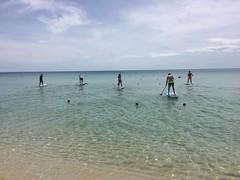 Water Regatta | MessageBird | Samui 2016