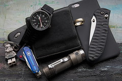 Pocket dump 18_10_2016 (jedenasty) Tags: gws g10 benchmade griptilian custom scales iphone 6s dqg 18650 tiny victorinox manager