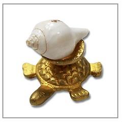Shankh on Tortoise,Shankh,Brass Tortoise,Conch Shankh Vedic Vaani (vedicvaani) Tags: shankh tortoise shankha brass conch shell turtle set sacred instrument vishnu lakshmi
