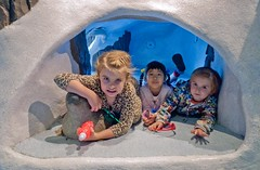 P1110338 (150hp) Tags: young boy xavier girl sydney family cute happy como park zoo conservatory emma panasonic lx3