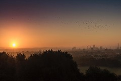Morning (KJanoskova) Tags: uploaded:by=instagram london hampstead heath morning sunrise autumn