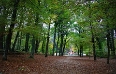 Un paseo por La Granja... (Garciamartn) Tags: rboles fuente otoo hojas paisaje granjadesanildefonso segovia nino garciamartn naturaleza castillalen espaa europa