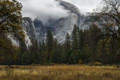 Seasons Change (shaunezell) Tags: 3030 keywords fall color vibrant yosemite valley national park half dome storm clouds atmosphere fog weather winter yellow leaves leaf nature outdoors hiking camping camp california mountains mountain meadow tree cold image colorful colors
