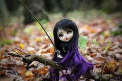 The witch in forest (Alluka Zoldyck) Tags: pullip pullips doll dolls custo custom fc fullcusto fullcustom make makeup up face faceup ooak andora witch forest cancan wig obitsu rare rche original groove japan france halloween sorciere sorcire handmade outfit foret