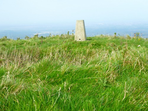 18097 Creech Barrow Hill a
