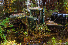 DSC_1476 (andrzej56urbanski) Tags: chernobyl czaes ukraine pripyat prypeć prypyat kyivskaoblast ua