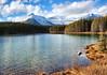 Herbert Lake, Banff National Park, Alberta, Canada - ICE(5)1404-05 (photos by Bob V) Tags: mountains rockies rockymountains canadianrockies alberta albertacanada banff banffpark banffnationalpark banffalberta banffalbertacanada panorama mountainpanorama herbertlake