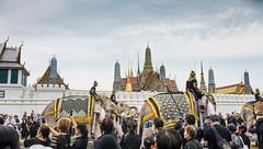 Mahouts, elephants pay respects to King Bhumibol at the royal palace (viroj_sup) Tags: bangkok bangkokcity thailand thai king bhumibol dying mahouts elephants payrespect royalpalace palace raining wet whitesky