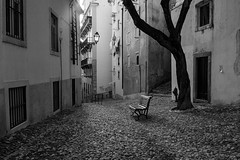Alfama (Dani Alvarez Caellas) Tags: lisboa portugal praa banco bench tree rbol street streetphotography blackandwhite blancoynegro bw monochorme brancoepreto