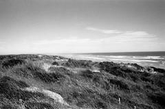 1535 (The Dent.) Tags: nikon f3 kodakhawkeyesurveillancefilm 2485 hc110 dilution b 6 mins 28mm nikor prime goolwah south australia