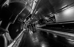 IMG_9836 (Lens a Lot) Tags: 10mm paris | 2016 canon efs 1018mm f4556 is stm metro subway people ultra wide angle lens black white blackandwhite street photography streetphotography noir et blanc monochrome abstrait gomtrique lignes structure infrastructure diagonale profondeur de champ train horizon intrieur