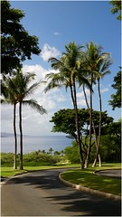 Wailea, Maui (kcezary) Tags: wailea maui efm1855mmf3556isstm eosm