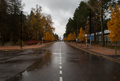 An Autumn City (modestmoze) Tags: autumn out outside outdoors 2016 500px city alytus lithuania sky clouds white grey blue sign poles sidewalk road wet reflection trees bush grass fence metal car line colorful travel explore buildings nature architecture yellow brown leaves changing statue art red windows roof fresh new beautiful view
