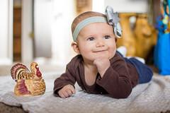 Happy Thanksgiving! (bflinch1) Tags: baby babygirl thanksgiving turkeyday love ellie portrait babyportrait 3mothsold bowtie cutie cute lovable adorable primelens girl smile november