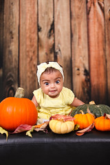 Malaak 5 months (Mido Melebari) Tags: malice baby girl babygirl kid kids arab birthday birth day fall season 2016 smile happy 5d canon pumpkin studio father family photo picture