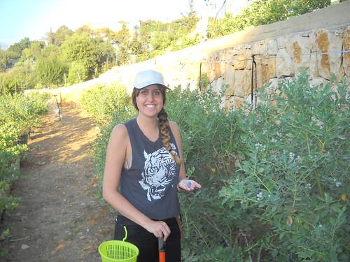 Rima picking Blueberries b Jun 15, 2014