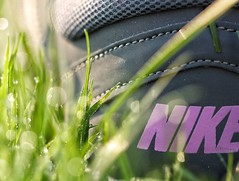 ....just do it (s@ssyl@ssy) Tags: morning hot grass early bokeh sunny nike dew hmm justdoit macromondays personalfootwear