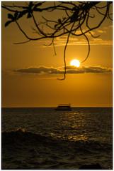 a wish to touch the sun (i.v.a.n.k.a) Tags: ocean sunset island hawaii big pacific sony alpha kona ivana kailua hesova