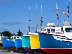 Inshore Fishing Boats Lined Up for Maintenance, Port Mouton, Nova Scotia (HerringCoveMike) Tags: canada fishing colorful novascotia ships repair maintenance lobster herring boatyard capeislander portmouton inshorefishing