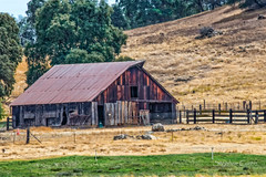 Amador Barn and Fence (stephencurtin) Tags: california county trees grass barn fence landscape wooden amador thechallengefactory