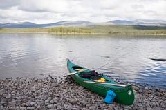 Femunden und Jmtland-481 (jo.hermann) Tags: nature norway landscape norge scenery schweden norwegen canoe mohawk sverige kanu greyowl gatz paddeln femunden femund feragen