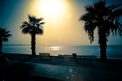 Two mornings after (Melissa Maples) Tags: cameraphone morning blue trees sea summer black reflection apple water silhouette sunrise turkey gold dawn asia mediterranean trkiye palmtrees antalya prom lensflare flare sunflare iphone  iphone6