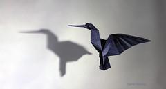 Colibr enamorado (Daniel Naranjo) Tags: art paper origami hummingbird arte papel papiroflexia colibr artcraft