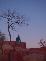 Pink Glow (suenosdeuomi) Tags: newmexico santafe kid child olympus redrocks railyard olympusepm1
