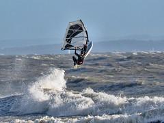 PC311709-Edit (Brian Wadie Photographer) Tags: gulls oystercatcher windsurfing kiting em1 goodlight 14xtc avonbeach canon70300lis hemgistburyhead