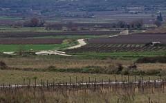 Chemin des vignes vers St Come - IMG_6472 (6franc6) Tags: 30 rando languedoc gard 2015 vélo décembre 6franc6 kalkoff lavistrenque