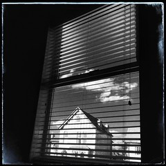 290/366 (jim-green777) Tags: 2016 october 366project square view blinds window blackandwhite iphone iphoneographers