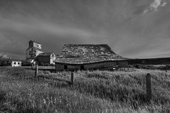 Sharples in mono (Len Langevin) Tags: abandoned old building barn grainelevator pandh alberta weatheredwood derelict rural decay canada nikon d300s tokina 1116