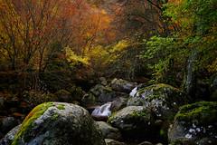 Rila mountain - Bulgaria (Sayman K) Tags: rila mountain bulgaria nature