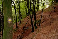 DSC_0025 (jrzurutuza) Tags: renteria listorreta urdaburu aldura aia aya harria peas ruta carboneros