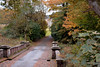 towards the house (Harry McGregor) Tags: outdoor tree plant bridge autumn auchinleckhouse eastayrshire nikon d3300 harrymcgregor 24 october 2016 woodland farmland boswell boswellfamily