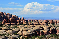 Canyonlands (NaturalLight) Tags: canyonlands national park needles utah