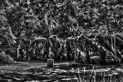 Entrance Stones (fishmonger45) Tags: photoshop photomatix landscape nature bw hdraddicted hdr hdrphotomatix hss monochrome