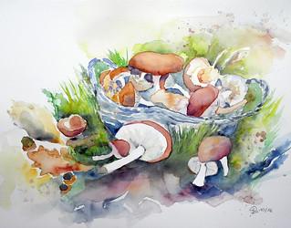 375 Korb mit Pilzen (Explore 15/10/2016)