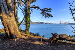 Lands End Trail (Chris J Russell) Tags: landmark bridge goldengatebridge goldengate sanfrancisco california unitedstates us