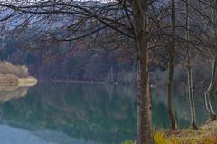 Autumn idylle (Drau/Austria/Krnten) (milance1965) Tags: fluss drau sterreich krnten herbst autumn idylle herbstidylle autumnidylle nikon d7000 50mm 1 4 50mm1 landschaft