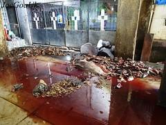 Dirty Fish Market (dirtypanjim8) Tags: joegoauk goa fish blood stinks
